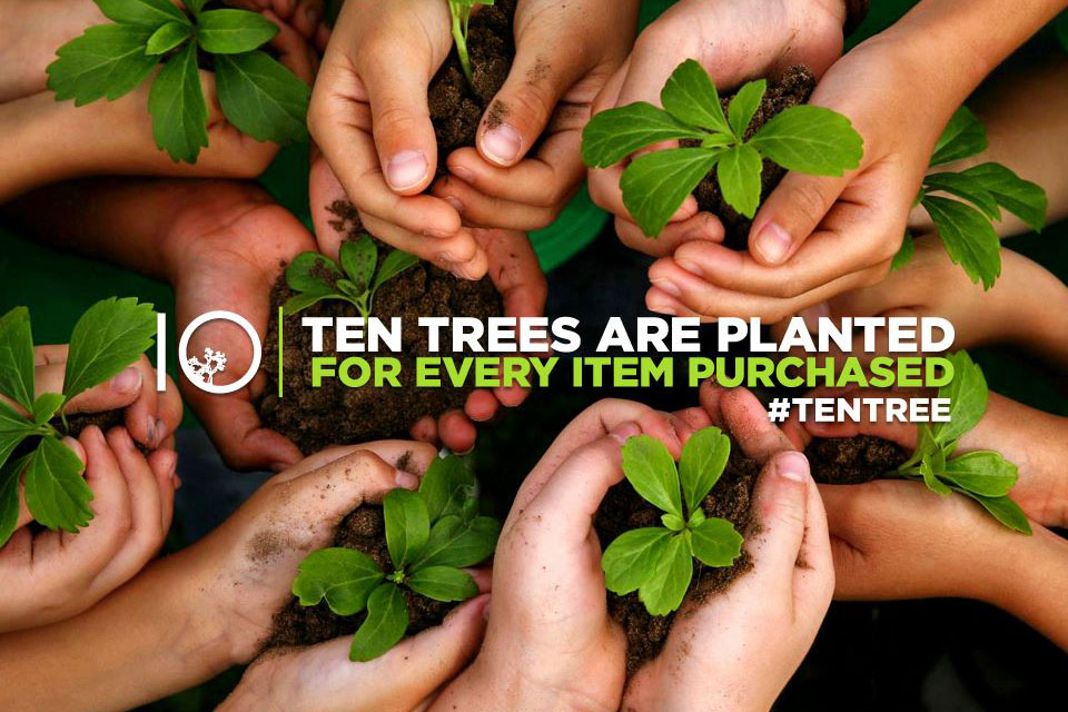 Sustainable and profitable – Ten Tree